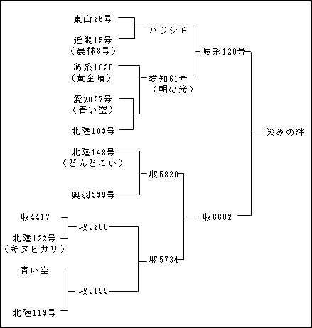 図1「笑みの絆」の系譜